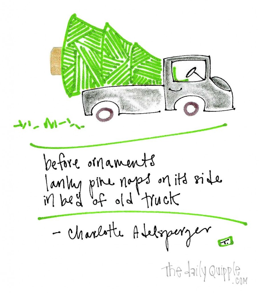 """before ornaments/ lanky pine naps on its side/ on bed of old truck"" -Charlotte Adelsperger"