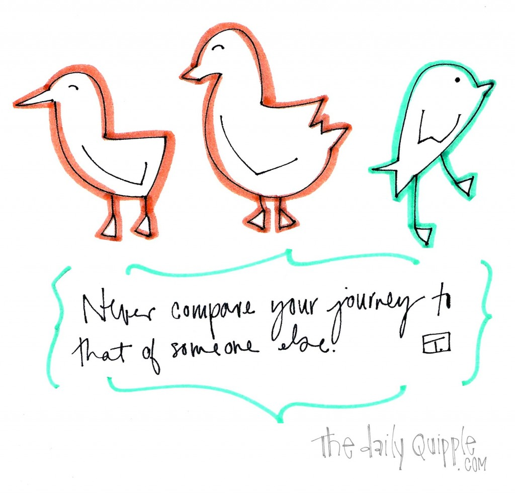 Your Path is Your Own | wise words from The Daily Quipple