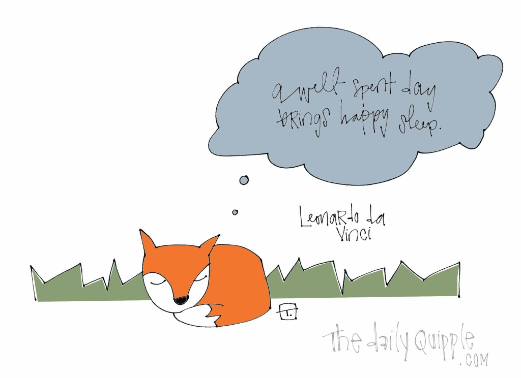 """A well spent day brings happy sleep."" [Leonardo da Vinci]"