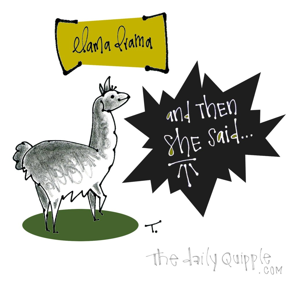 LLAMA DRAMA: And then SHE said...