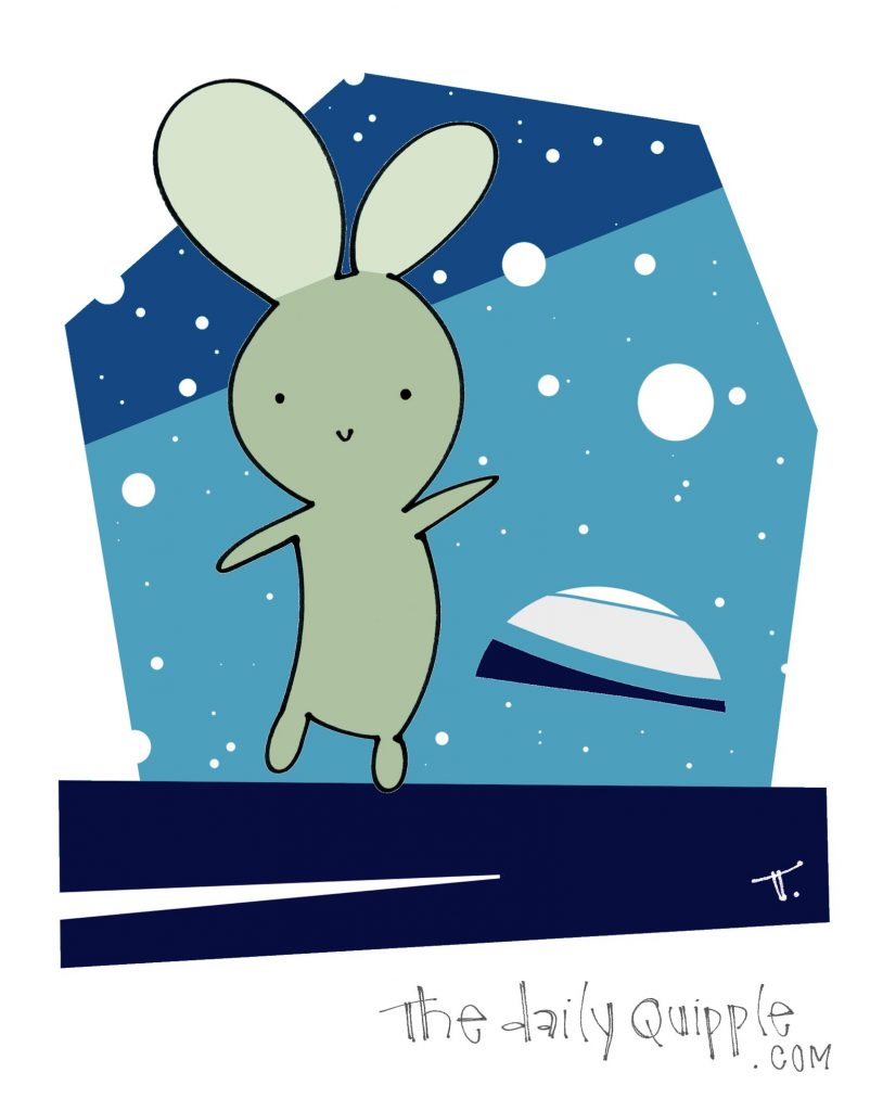 Space bunny.