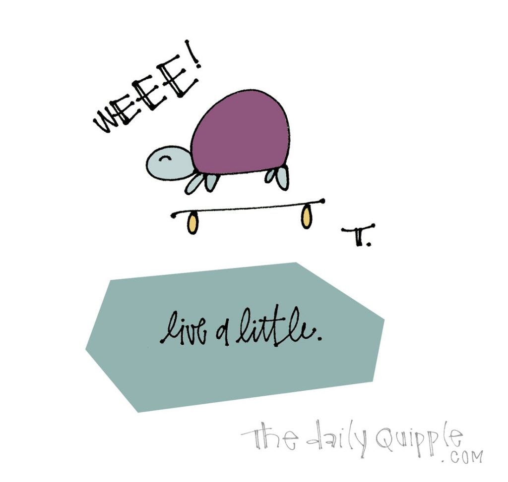 Be Like the Turtle | The Daily Quipple