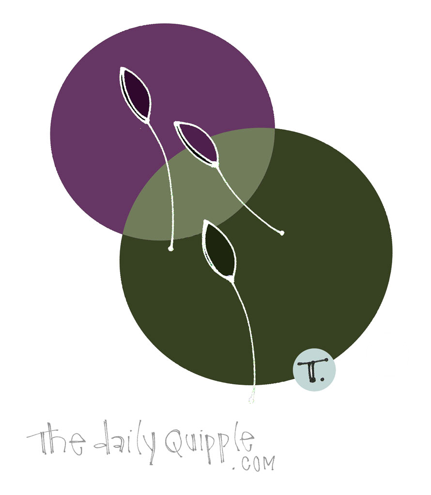 Embracing Simple | The Daily Quipple