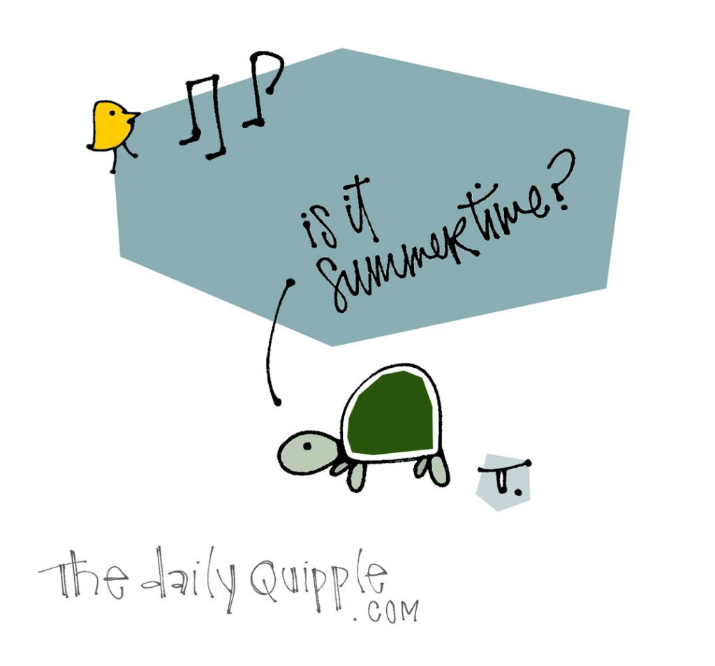 Feels Like Summer! | The Daily Quipple