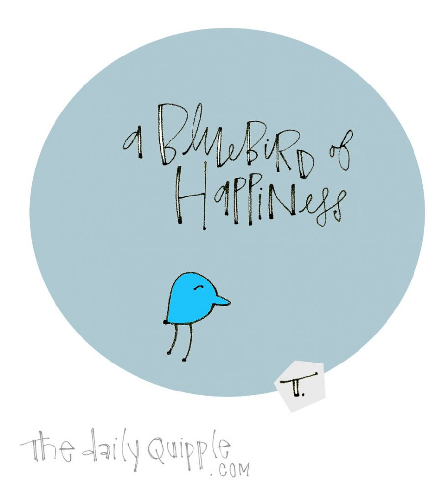 Happy Little Bluebird | The Daily Quipple