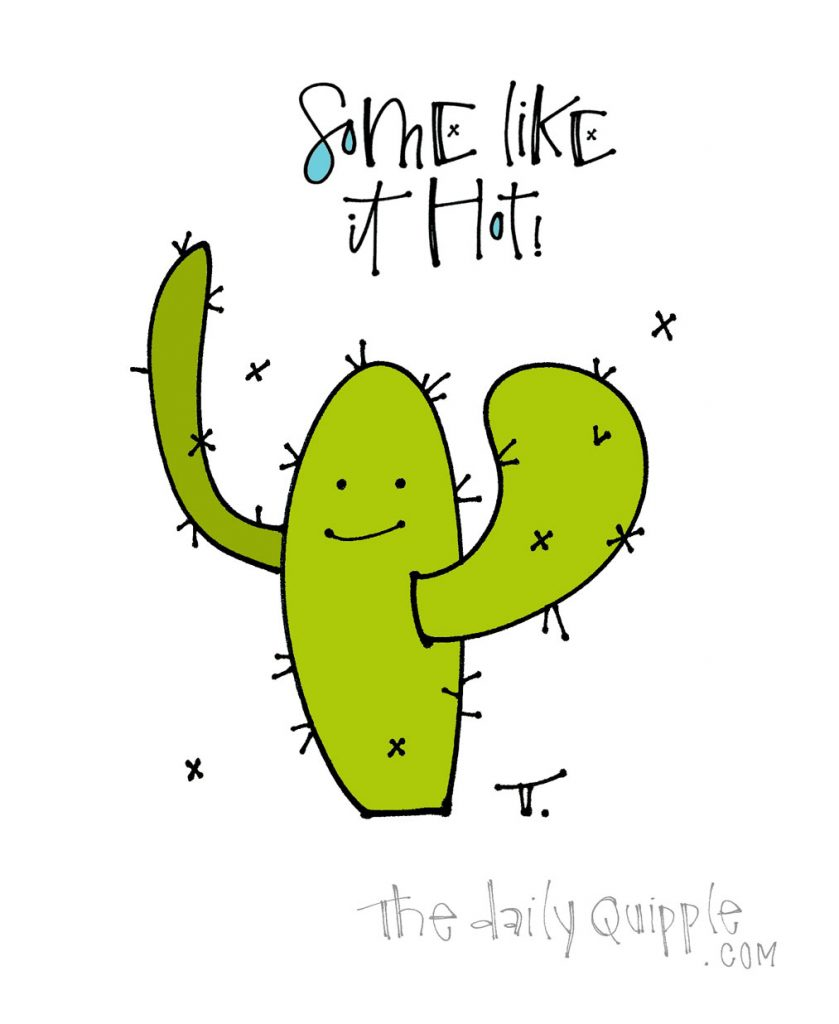 Cactus Song | The Daily Quipple