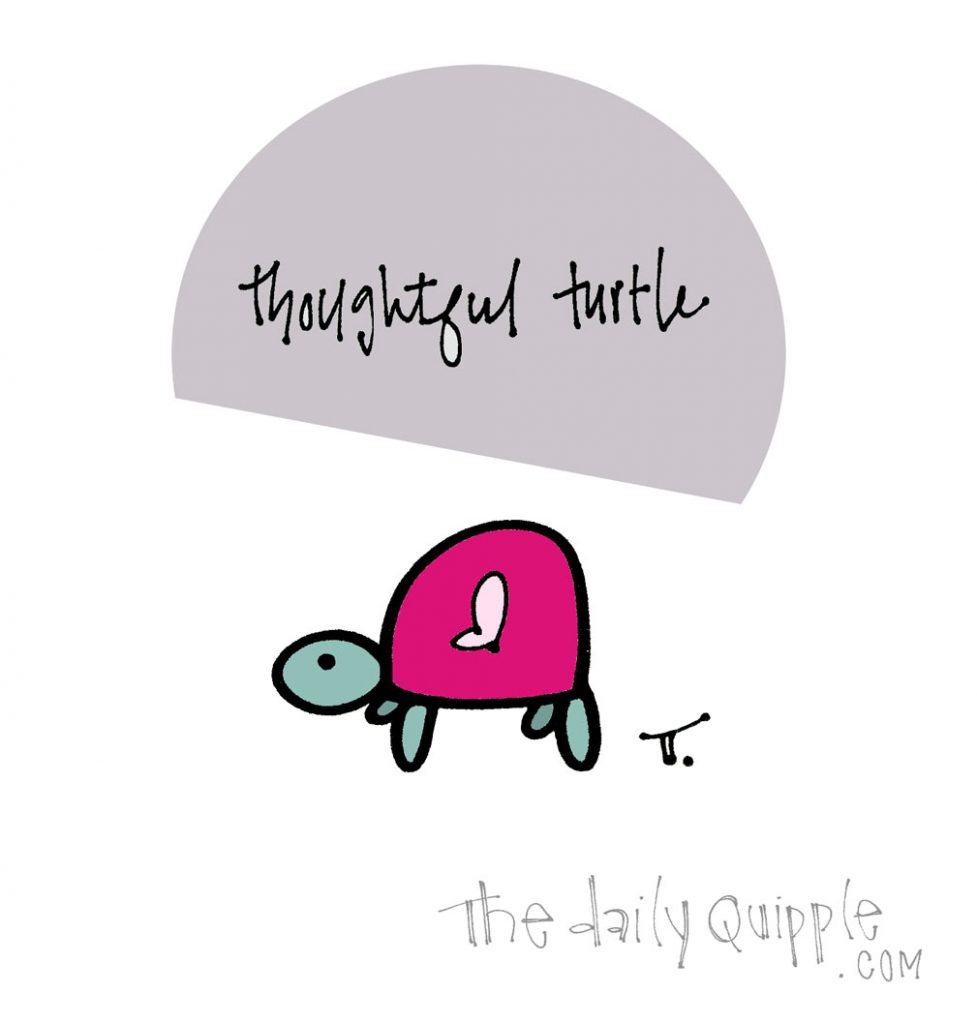Turtley Thoughtful | The Daily Quipple