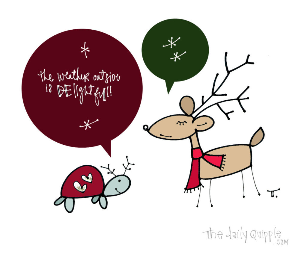 Holiday Delight | The Daily Quipple