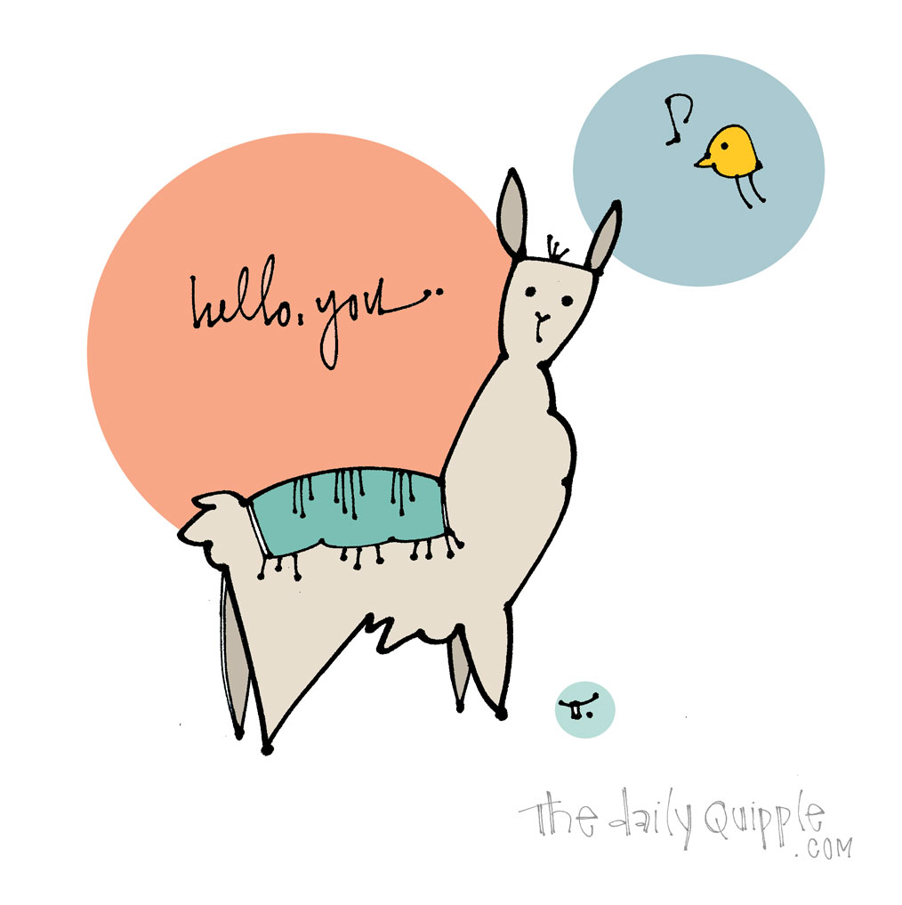 Hey Llama | The Daily Quipple