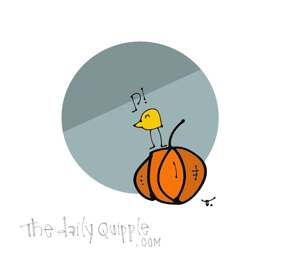 Who Doesn't Like Pumpkins? | The Daily Quipple
