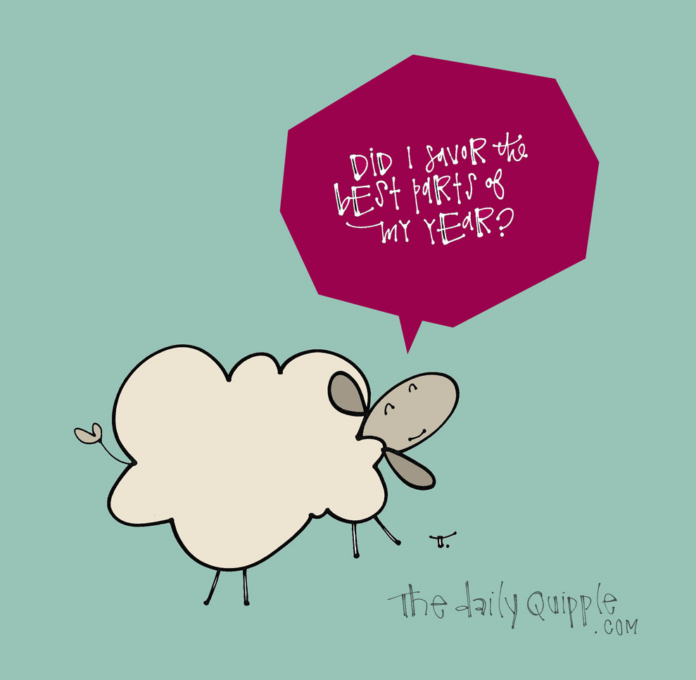 Did Ewe? | The Daily Quipple