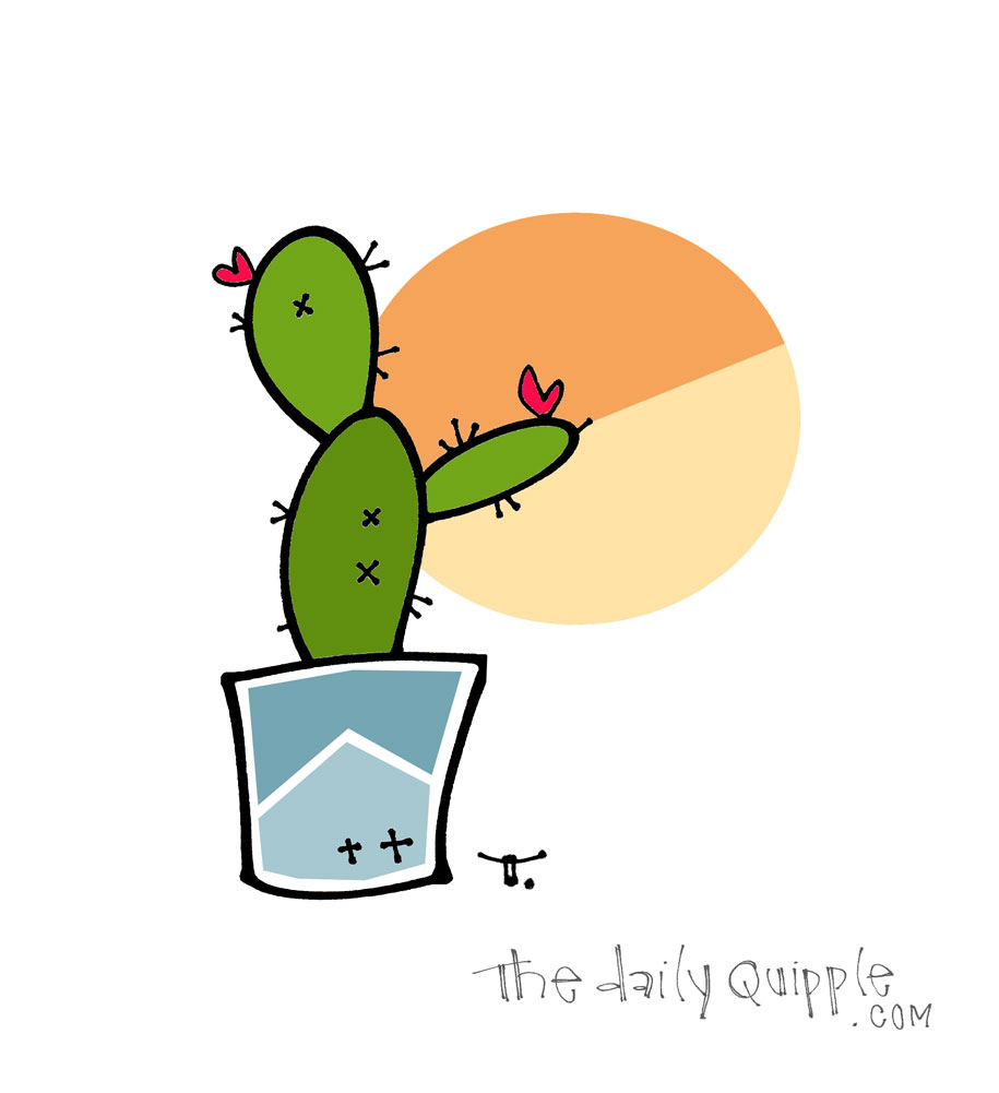 Thankful for Another Sunrise | The Daily Quipple