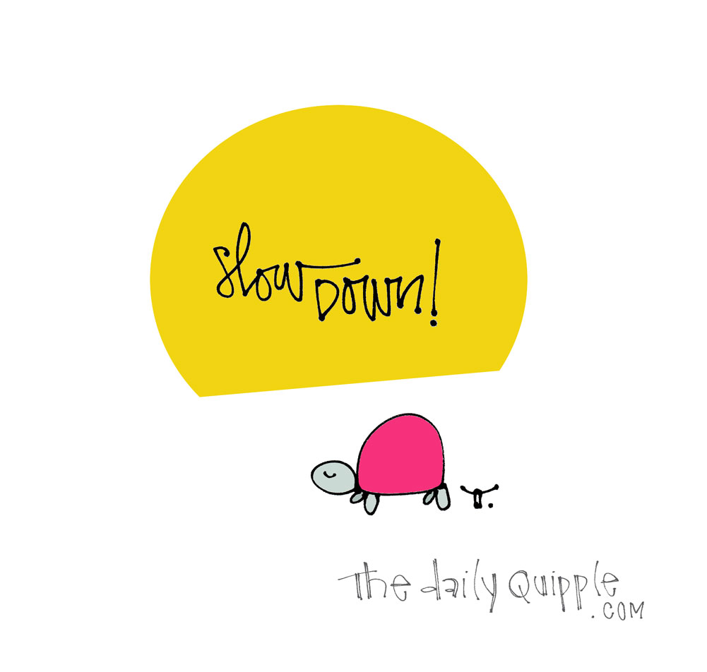 Reminder to Slow | The Daily Quipple
