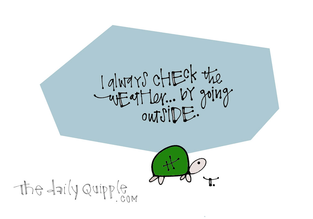 Weather Report | The Daily Quipple